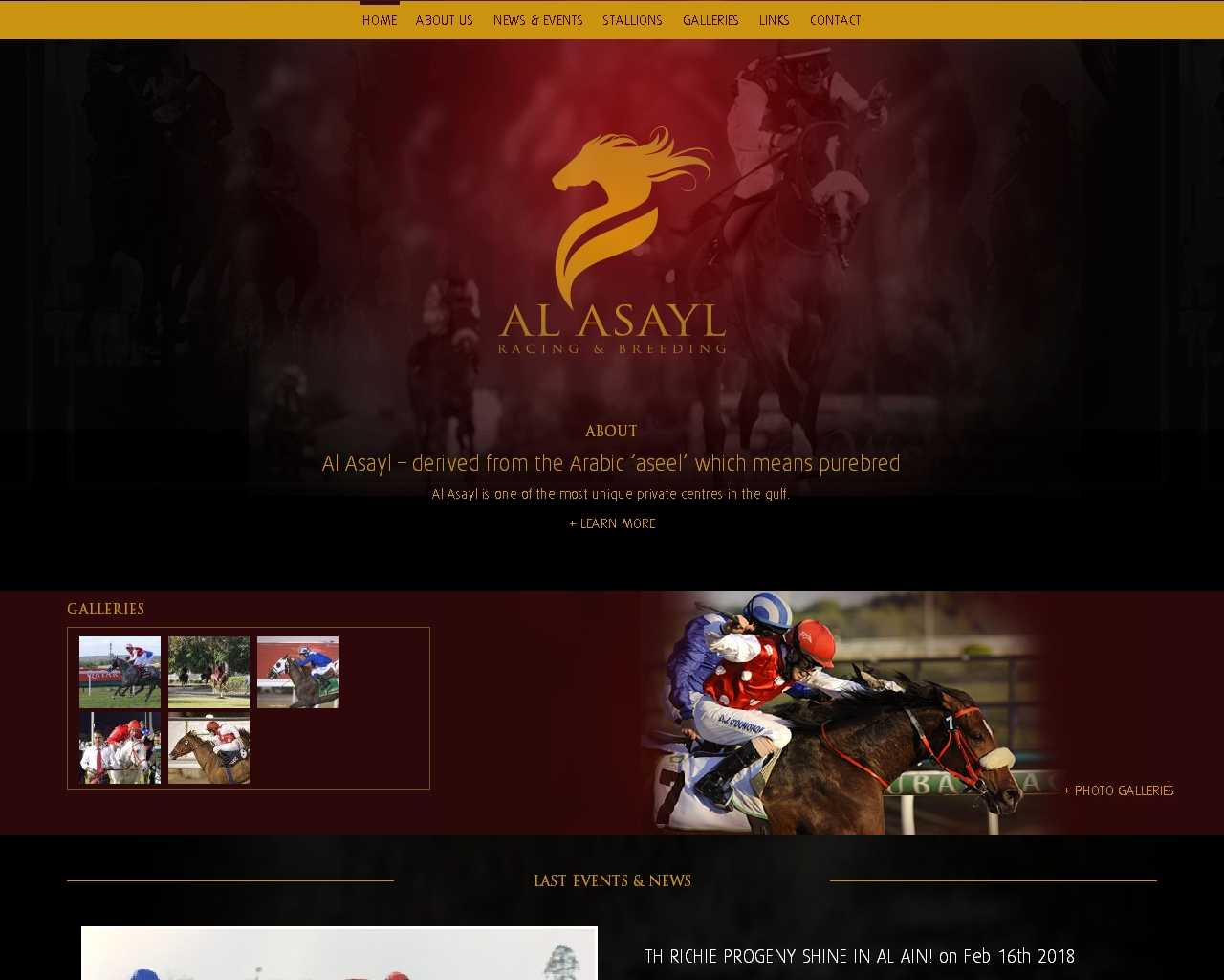 Al Asayl stables un site Dreamclic