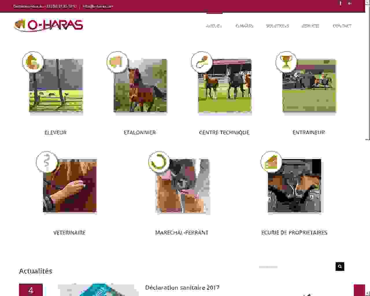 Hippodrome Bordeaux-Le Bouscat un site Dreamclic