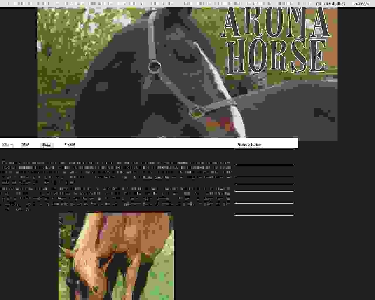 Aroma Horse