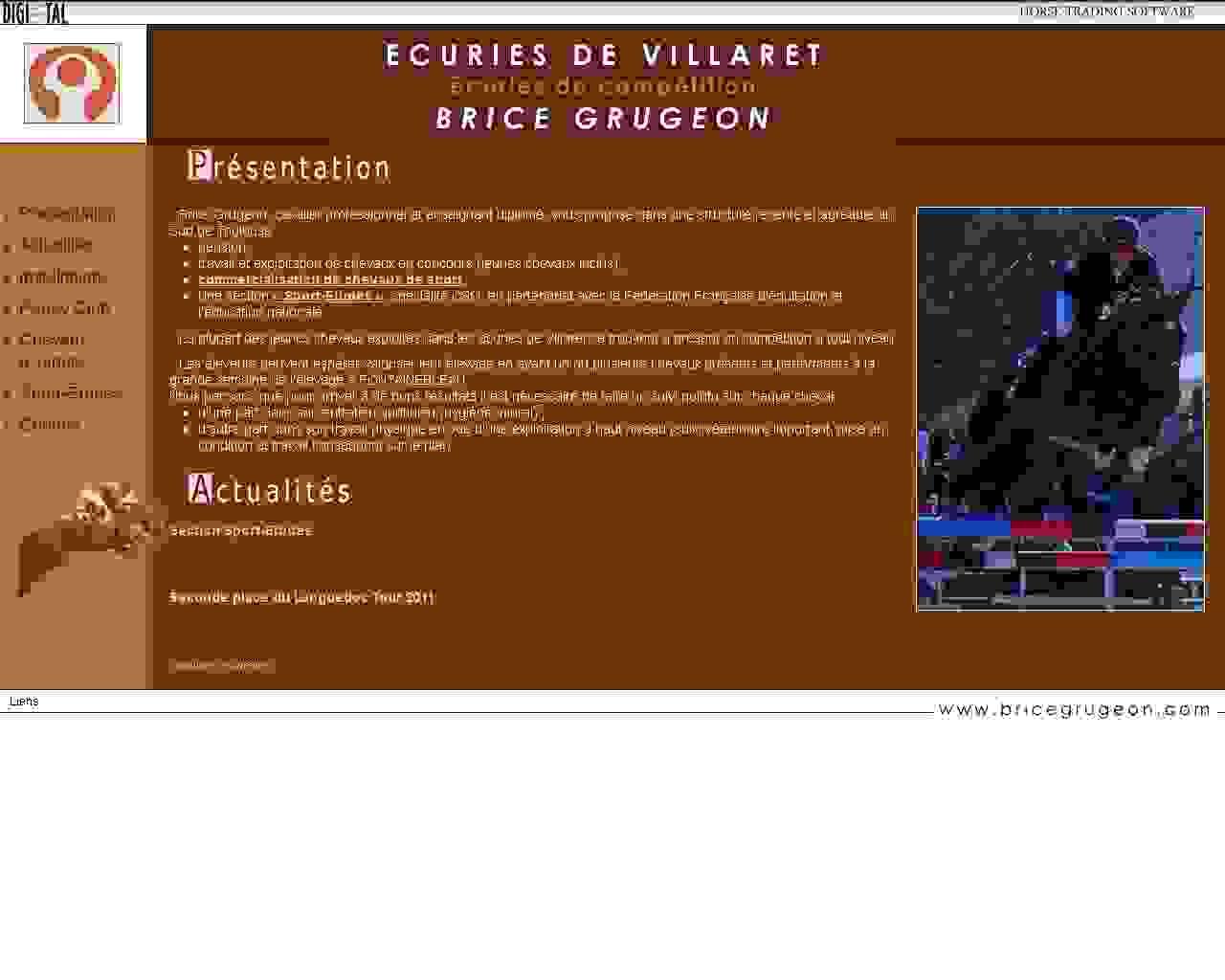 Visuel du site Brice Grugeon