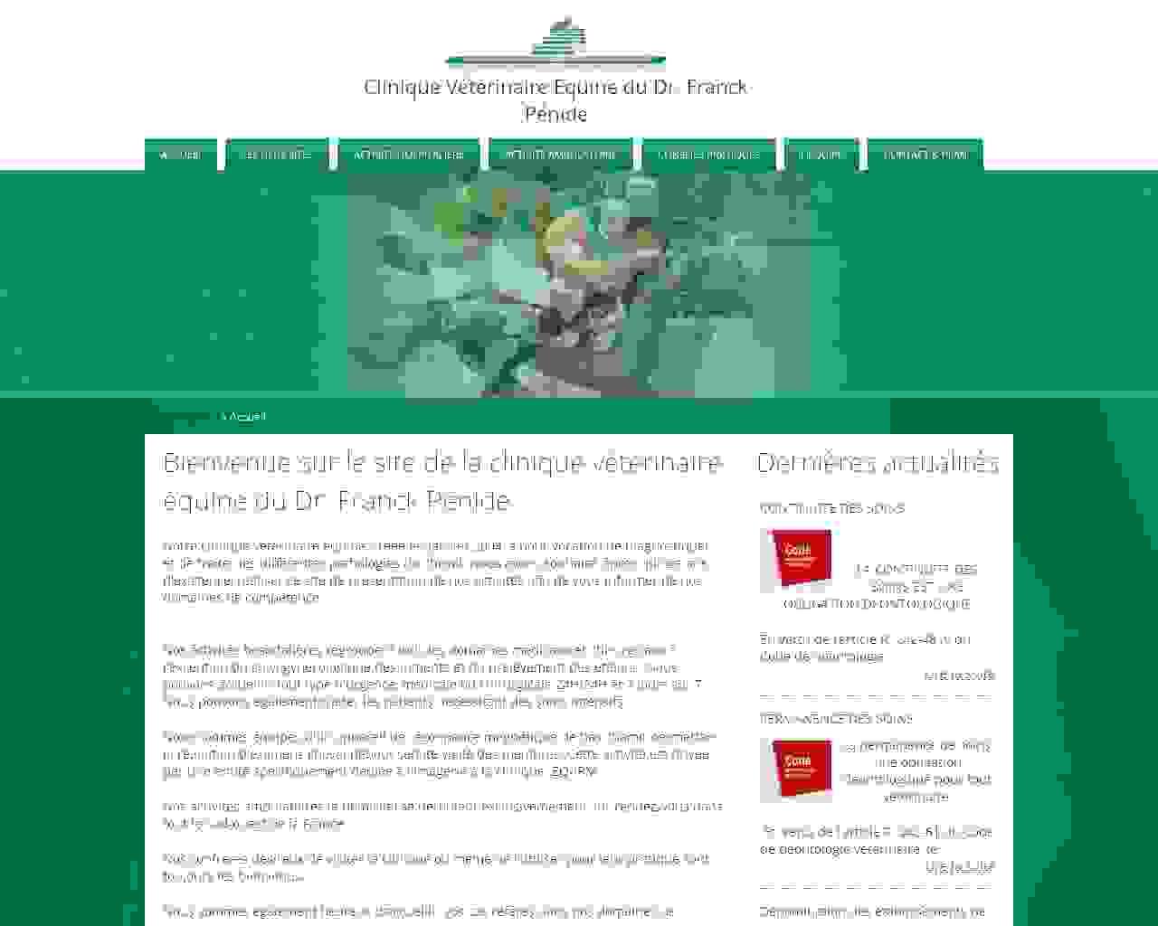 Visuel du site Clinique Pénide