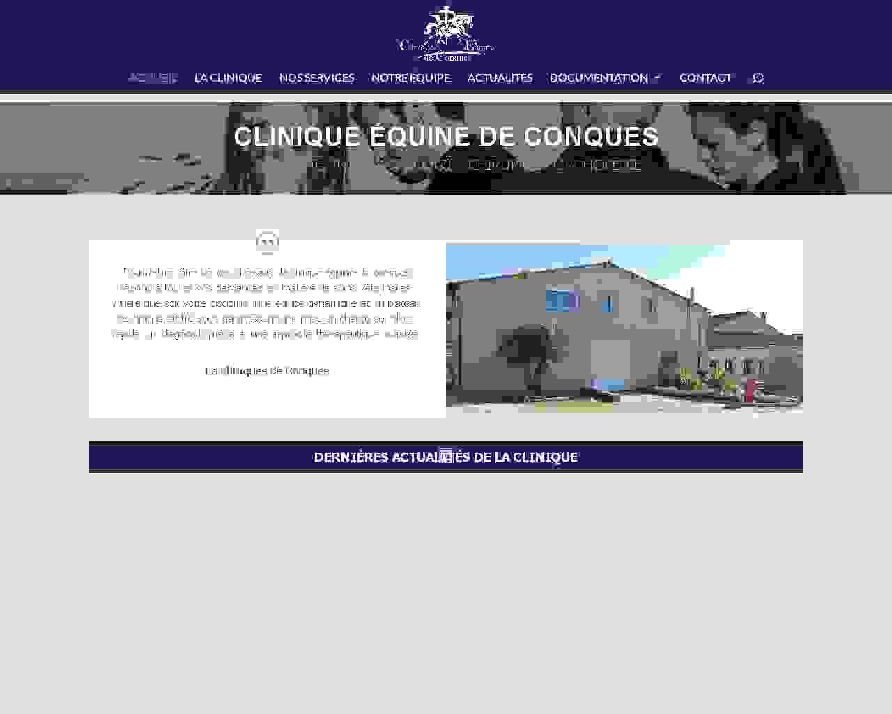 Visuel du site Clinique de Conques