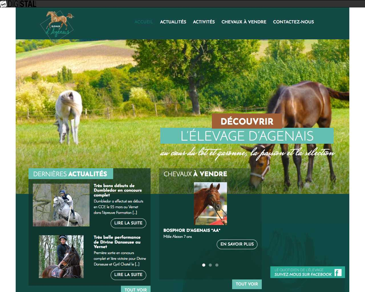 Elevage  d'Agenais un site Dreamclic