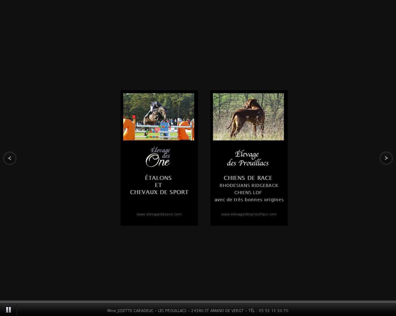 Visuel du site Elevage des One
