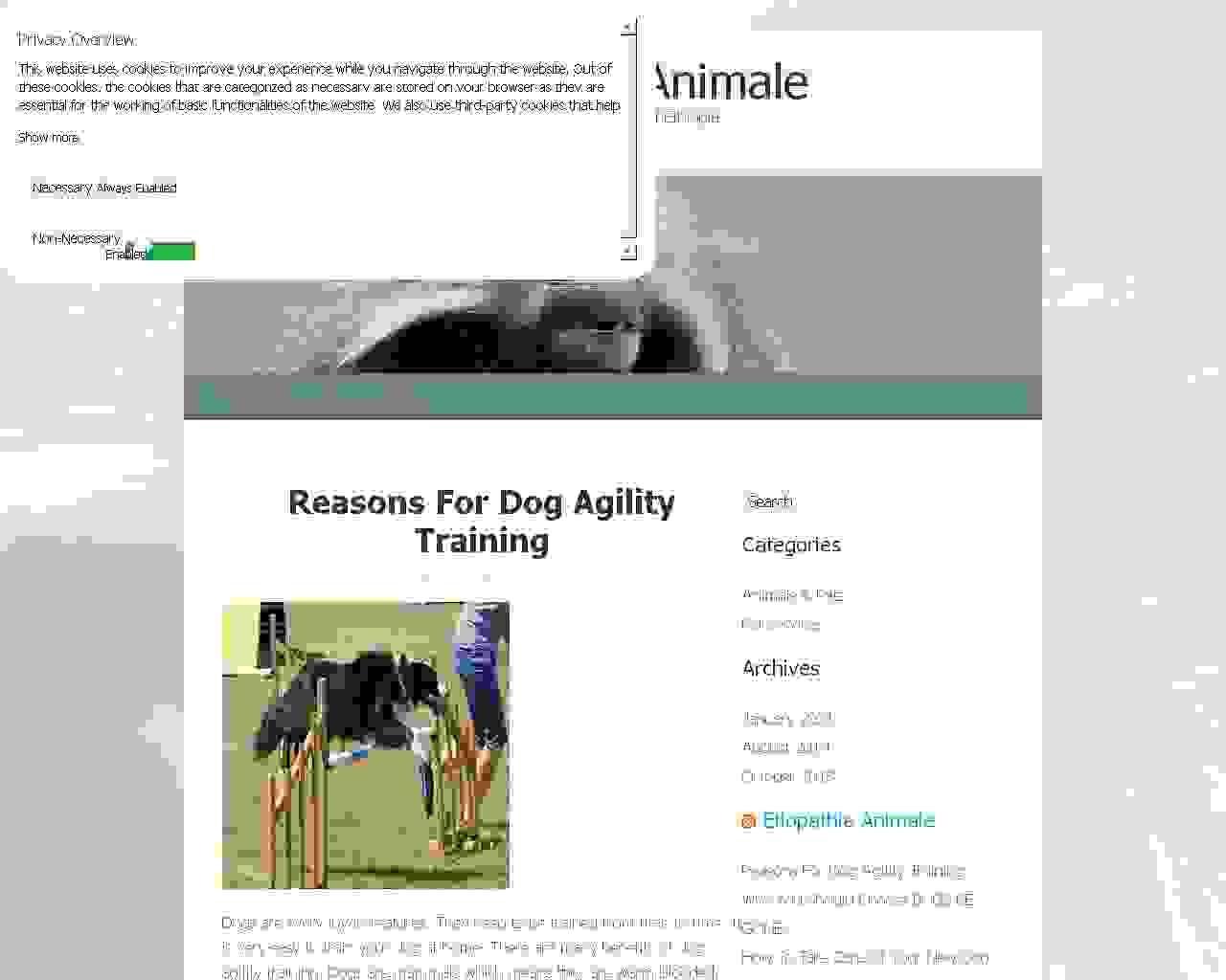 Découvrez www.etiopathie-animale.com le premier site de la thérapie manuelle animalière
