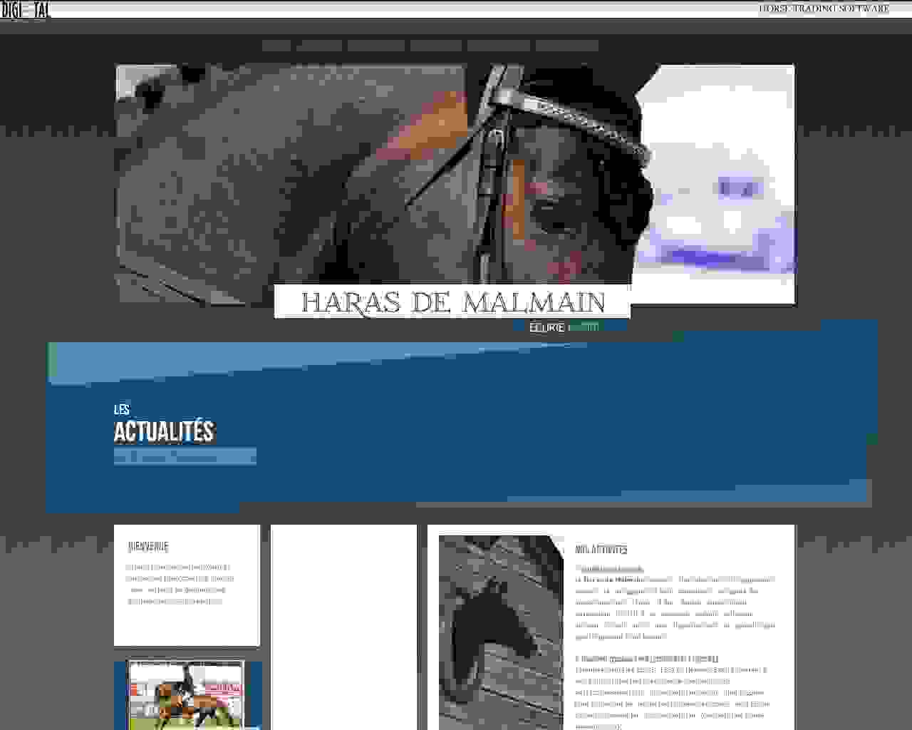 Visuel du site HARAS DE MALMAIN