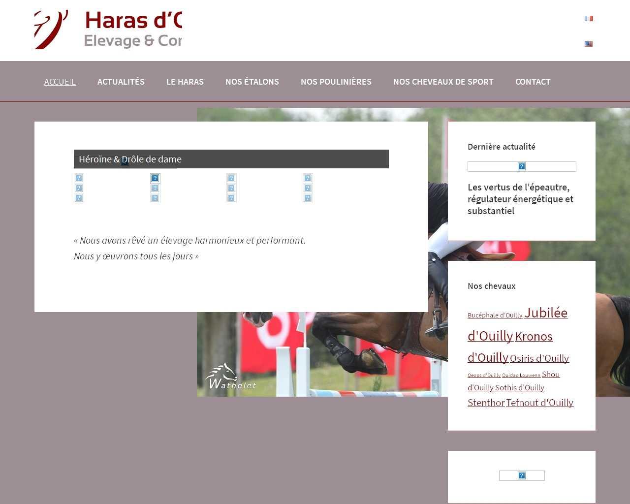 Visuel du site Haras d'Ouilly