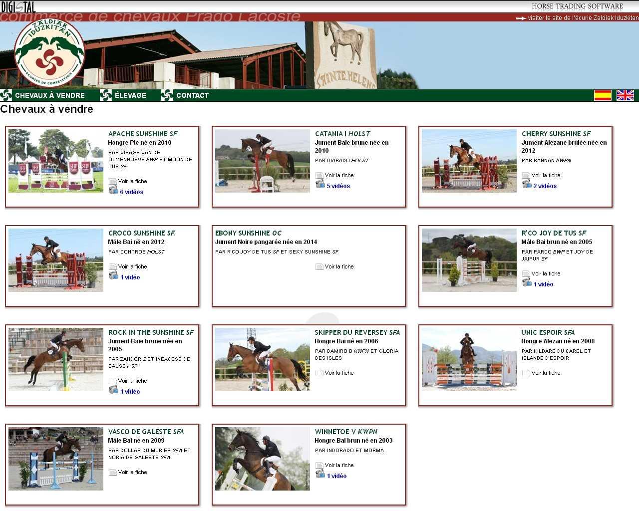 Visuel du site Prado-Lacoste
