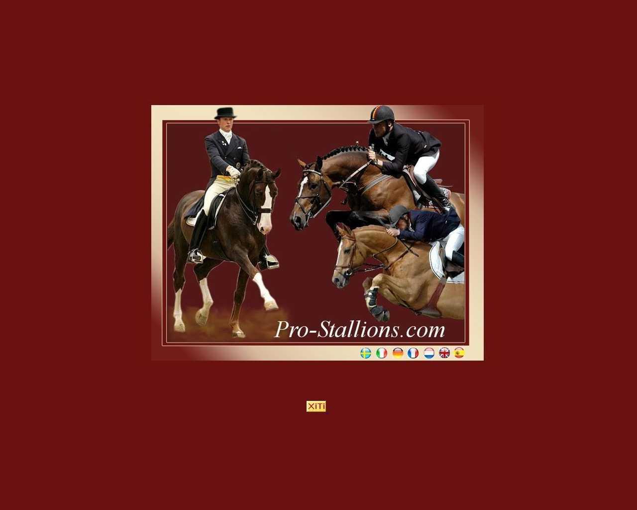 Pro-stallions.com
